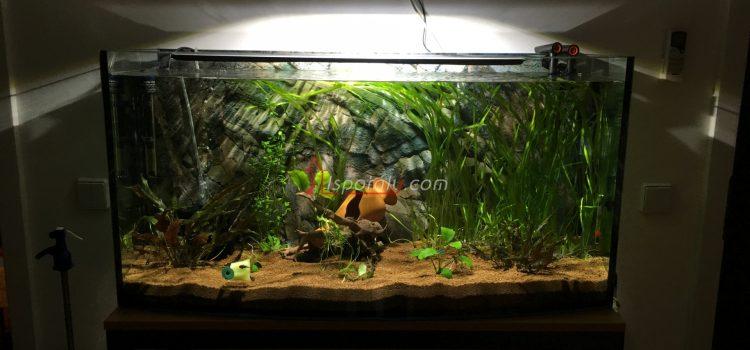 Új Wromak 180l-es akvárium
